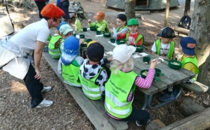 Professional development program Online course early childhood education Finland